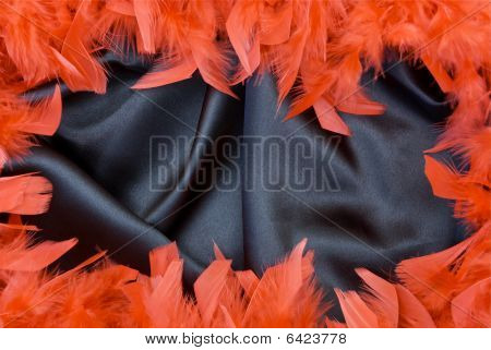red feather border