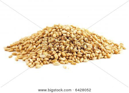 Food, Whole Grains