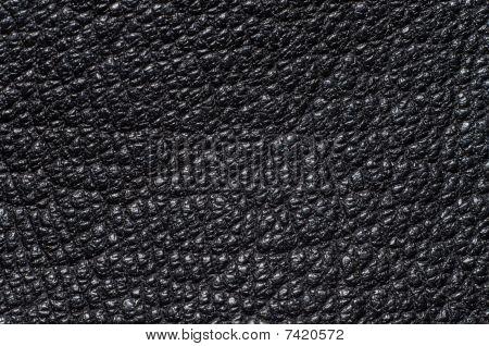Leather, Macro