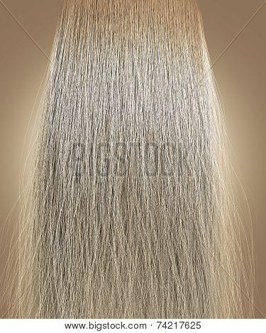 Blonde Hair Frizzy