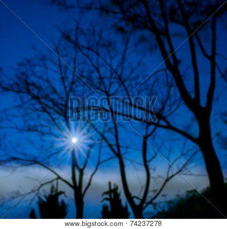 Blur Of Silhouette Tree And Moon At Night Background