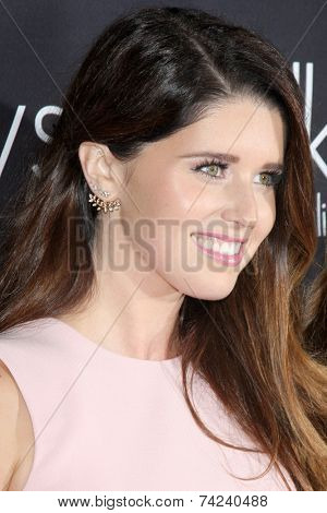 LOS ANGELES - OCT 18:  Katherine Schwarzenegger at the Pink Party 2014 at Hanger 8 on October 18, 2014 in Santa Monica, CA