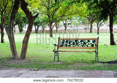 Wood Chair In Park