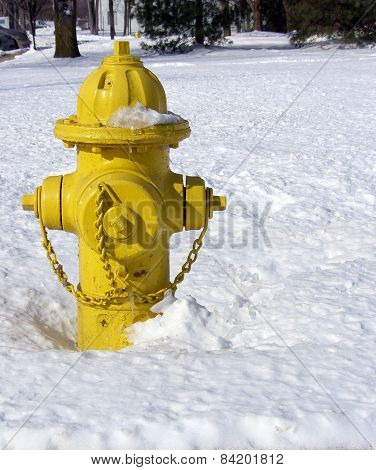 Yellow Fire Hydrant in Snow