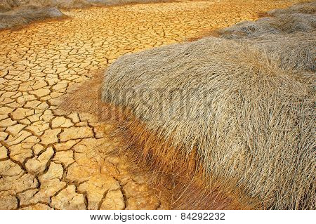 Hay on drought land amazing arid and cracked ground climate change made agriculture plantation have to reduct in summer it very hot warming is global problem cause by greenhouse effect poster