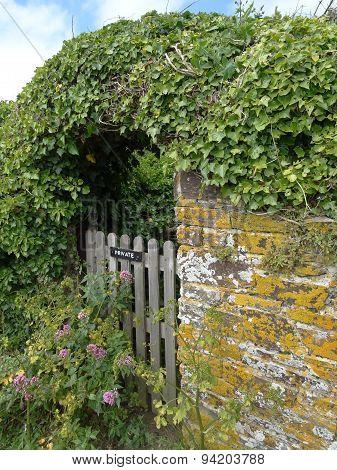 Gateway Within Walked Garden Hedge