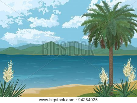 Palm on Ocean Beach, Flowers and Mountains