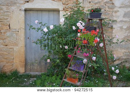 Rural House With Flower Ladder