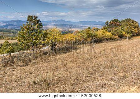 Autumn Landscape with yellow trees of Cherna Gora mountain, Pernik Region, Bulgaria
