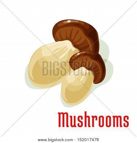 Boletus edible mushroom isolated cartoon icon. Delicious ripe forest porcini with broad brown cap. Healthy vegetarian food, recipe design