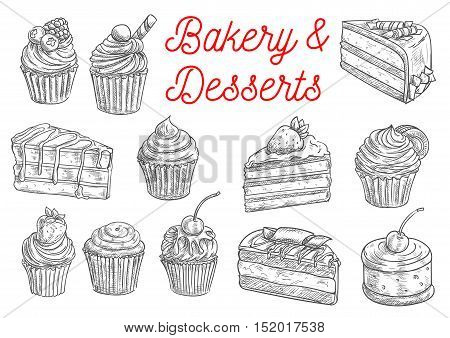 Bakery and pastry desserts sketches of chocolate cake, cupcake, muffin, fruit dessert and berry pie, topped with cream, cherry, strawberry and blueberry, sprinkles and waffles