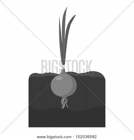Onion icon monochrome. Single plant icon from the big farm, garden, agriculture monochrome.