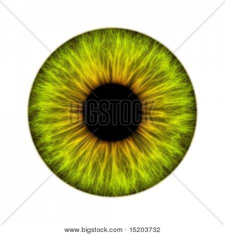 green iris texture
