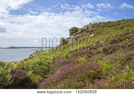 Chapel Down, St Martin's, Isles of Scilly, England