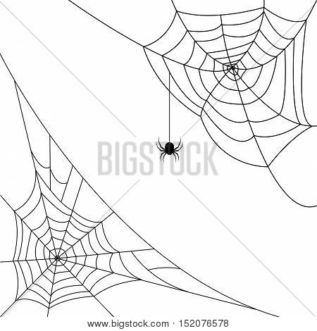 Halloween monochrome spider web and spiders in corners isolated on white background. Hector venom cobweb set. Vector illustration. poster