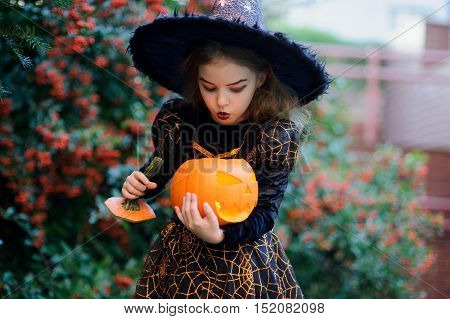 Nice girl of 8-9 years in a suit for Halloween with a pumpkin in hands. She portrays the evil witch. Girlie stands near a bush with a blood-red berries and blows on a candle inside the pumpkin.
