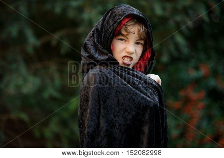 Boy of younger school age in a black-red cloak portrays the evil sorcerer. On the face of the boy corresponding make-up. Boy has a mysterious look. On a background a bush with red berries.