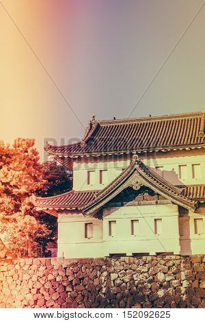 Beautiful  Imperial Palace in Tokyo, japan  ( Filtered image processed vintage effect. )