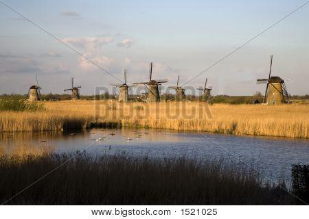 Dutch Windmills In Kinderdijk 12