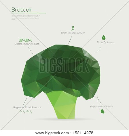 Broccoli abstract geometric style. Vector illustration with icons.