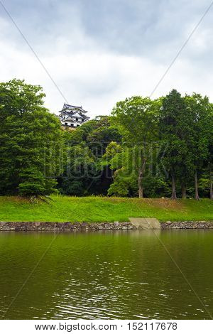 Hikone-jo castle at a distance above the treeline and surrounding moat on an overcast day in Hikone Japan. Vertical poster