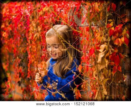 Little Girl On A Beautiful Background Of Autumn Wild Grapes