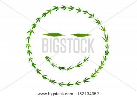 Smiling face with slit eyes made of hemp leaves isolated on white background