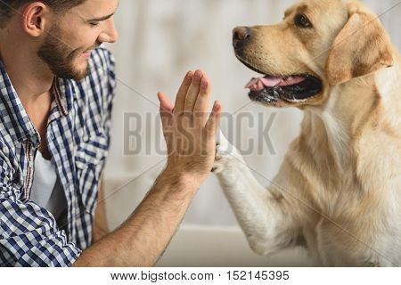 man holding dog's paw on a sofa, close up