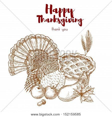 Thanksgiving holiday sketch turkey, pie, harvest. Vector elements of traditional thanksgiving celebration dinner meal in retro style