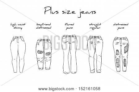 Hand drawn vector clothing set. Different models of trendy plus size jeans.