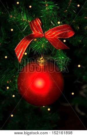 Christmas tree branch with red ornament. Christmas tree and Christmas decoration.