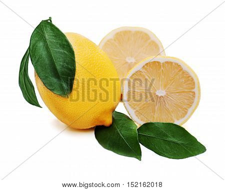 Fresh lemon citrus with cut and green leaves isolated on white background.