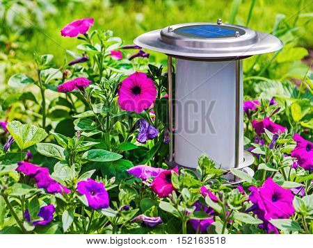 Solar-powered garden lamp on flower background. Closeup.