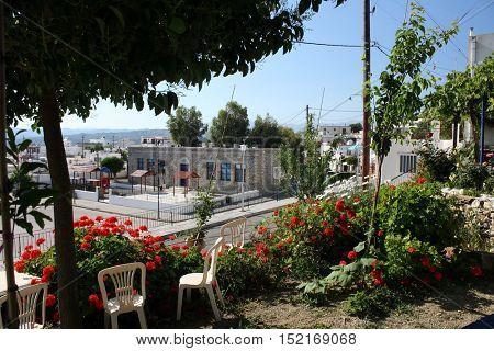 View from greek garden