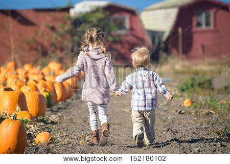 It's pumpkin time! Come to the farm and run fast to choose the best one!