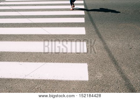Pedestrian zebra with walking female legs and asphalt. Road crossing background, safe cross walk in city. Urban backdrop