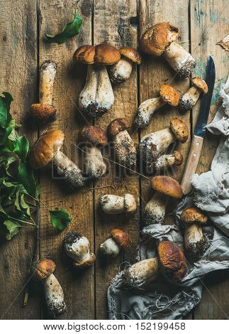 Fresh uncooked white forest mushrooms of different sizes, knife and tree branch with green leaves on rustic wooden background, top view, vertical composition