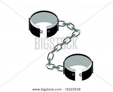 Stainless steel, shackles illustration.