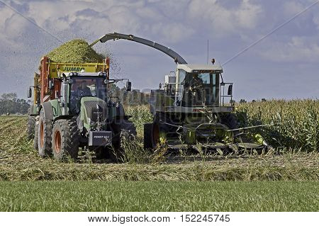 YSBRECHTUM, THE NETHERLANDS - OCTOBER 12, 2016: A Claas chopper with a six row corn head is filling a silage wagen with maize during harvest time.