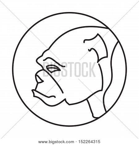 Head of breed dog bulldog. Domestic companion animal, vector illustration