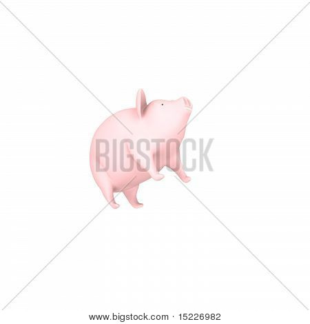 3d Baby Pig Concept