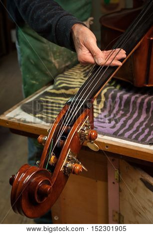 The master luthier Roberto Salvianti builds a double bass in his workshop