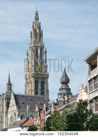 View on Antwerp cathedral showing the golden clock on the bell tower near the Great Square Grote Markt in Antwerp, Belgium