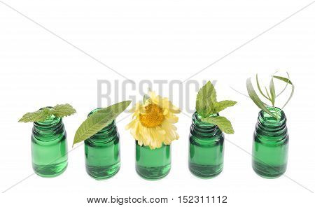 Bottle of essential oil with herb fresh plants and flowers, white background.
