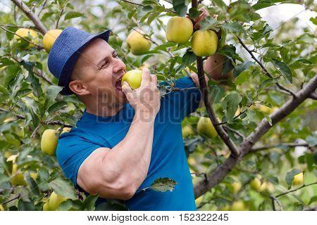 Farmer Eating An Apple
