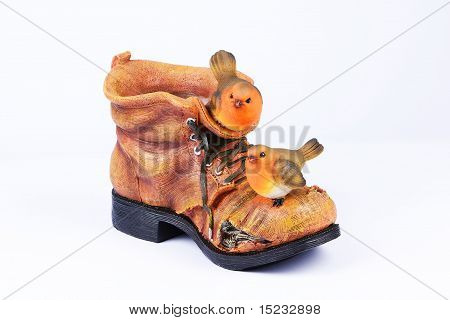 Robins sitting on boots