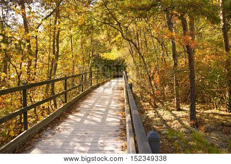 The boardwalk at Lilly Bluff overlook Obed Wild and Scenic River