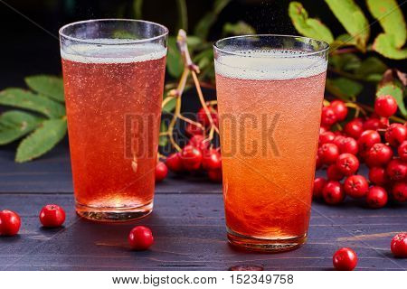 Two glasses of carbonated drink with syrup of rowan and fresh rowan berries on dark wooden table.