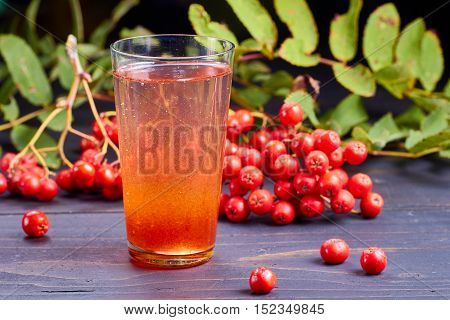 Glass of drink with syrup of rowan and fresh rowan berries on dark wooden table.