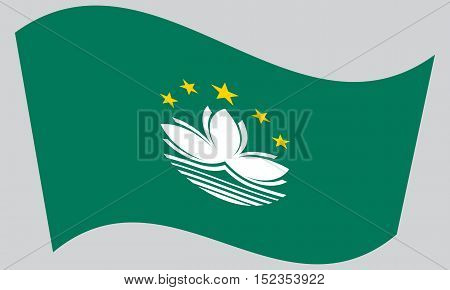 Macanese official flag. Patriotic chinese symbol banner element background. Macau is special region of PRC. Correct colors. Flag of Macau waving on gray background vector